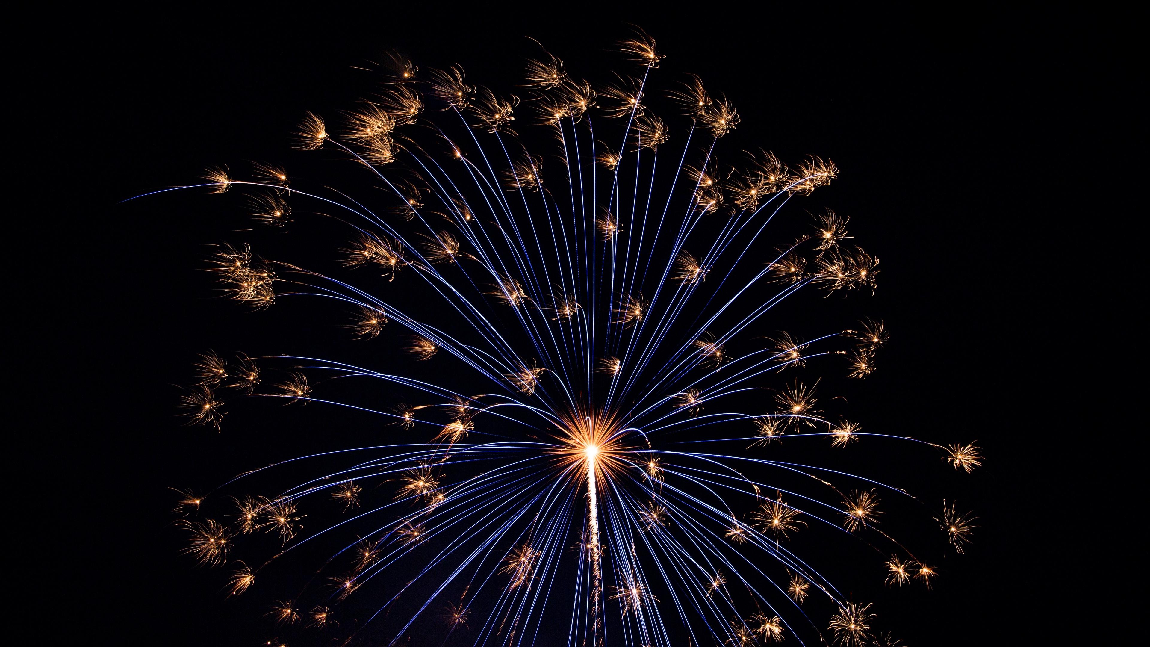 salute fireworks holiday 4k 1538345089 - salute, fireworks, holiday 4k - salute, Holiday, Fireworks