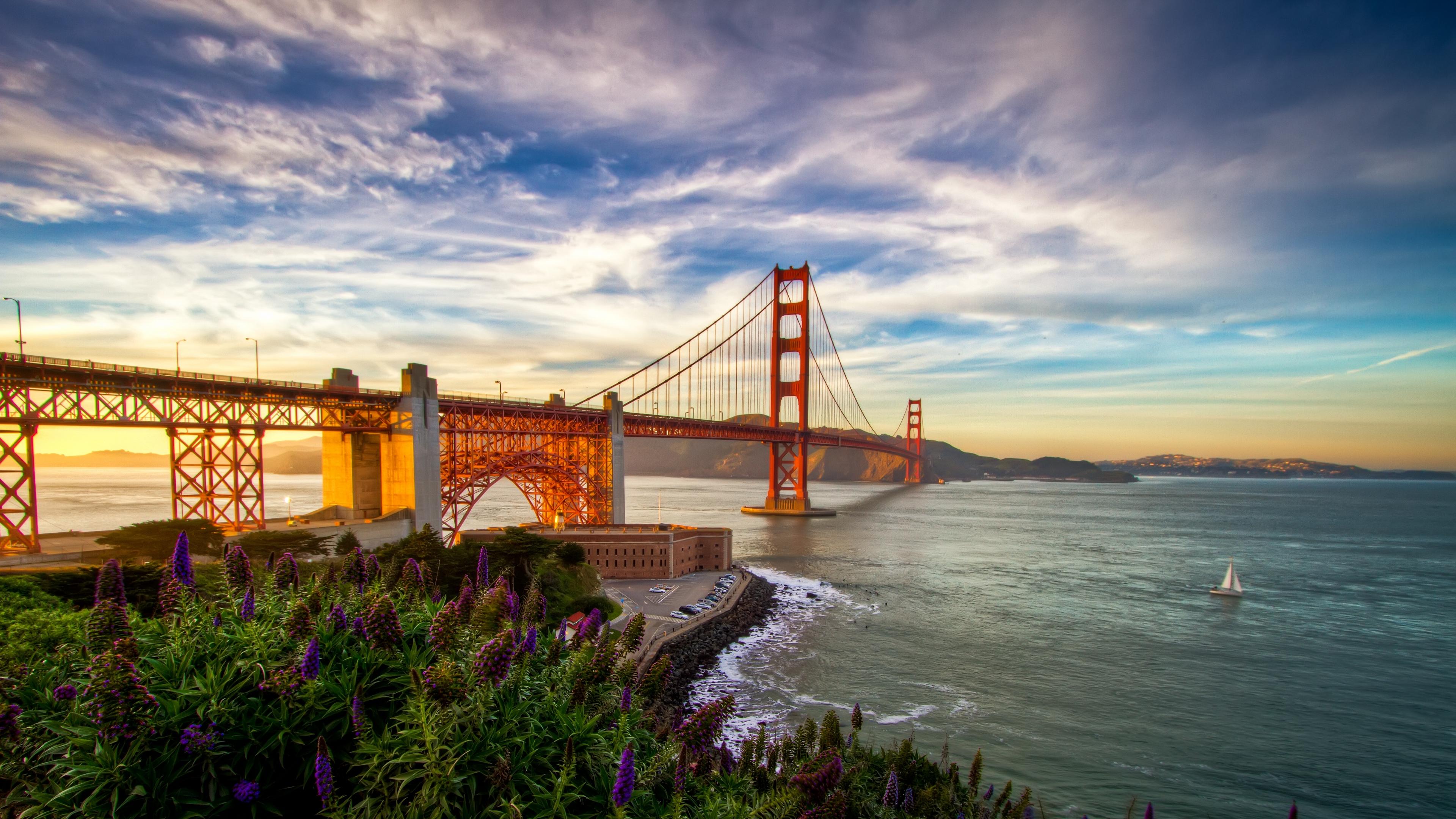 san francisco usa pacific ocean california sailboat flowers 4k 1538065668 - san francisco, usa, pacific ocean, california, sailboat, flowers 4k - USA, san francisco, pacific ocean