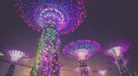 singapore artificial trees lighting decoration city 4k 1538066365 200x110 - singapore, artificial trees, lighting, decoration, city 4k - Singapore, Lighting, artificial trees