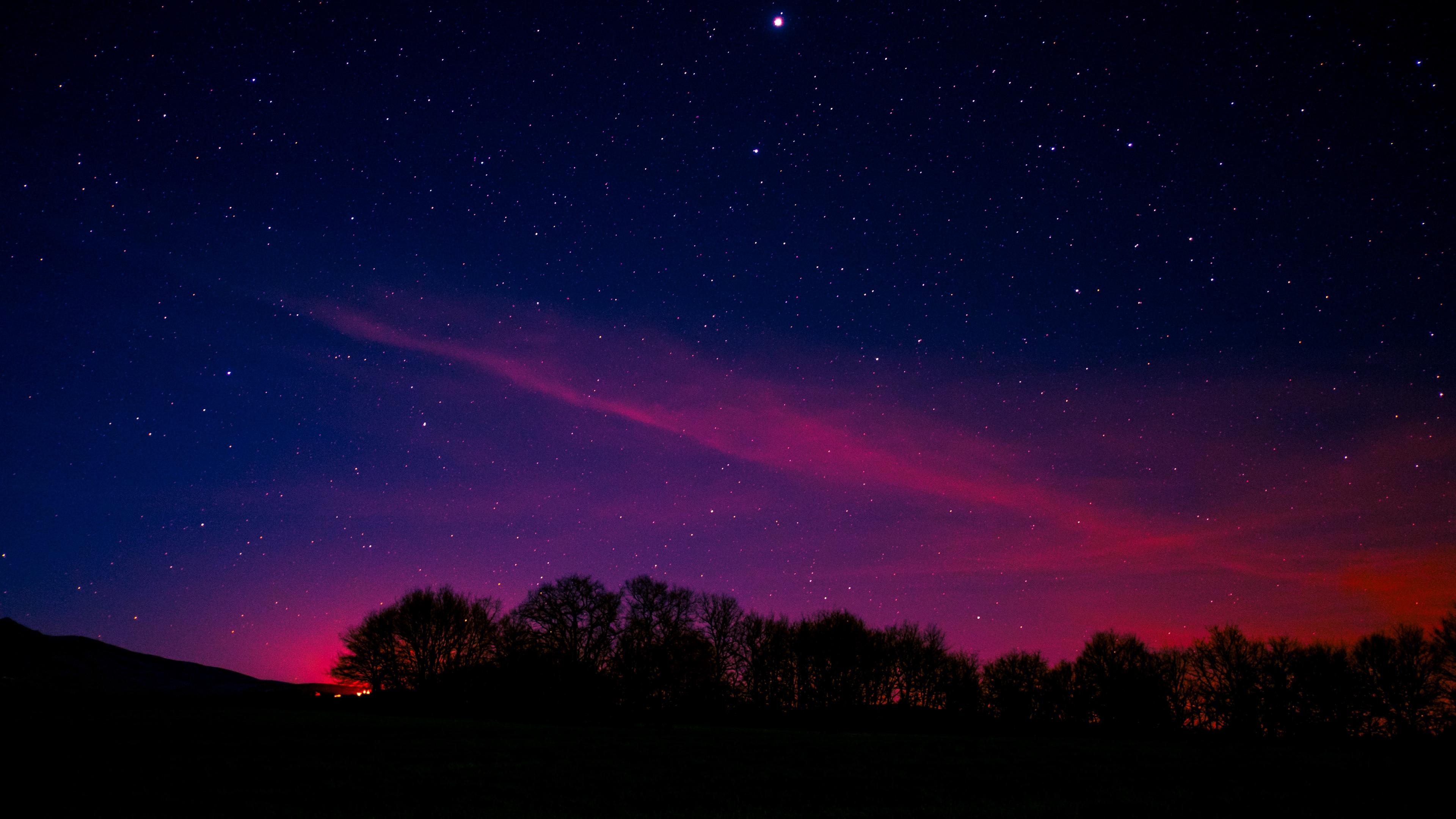 starry sky night trees clouds 4k 1536016889 - starry sky, night, trees, clouds 4k - Trees, starry sky, Night