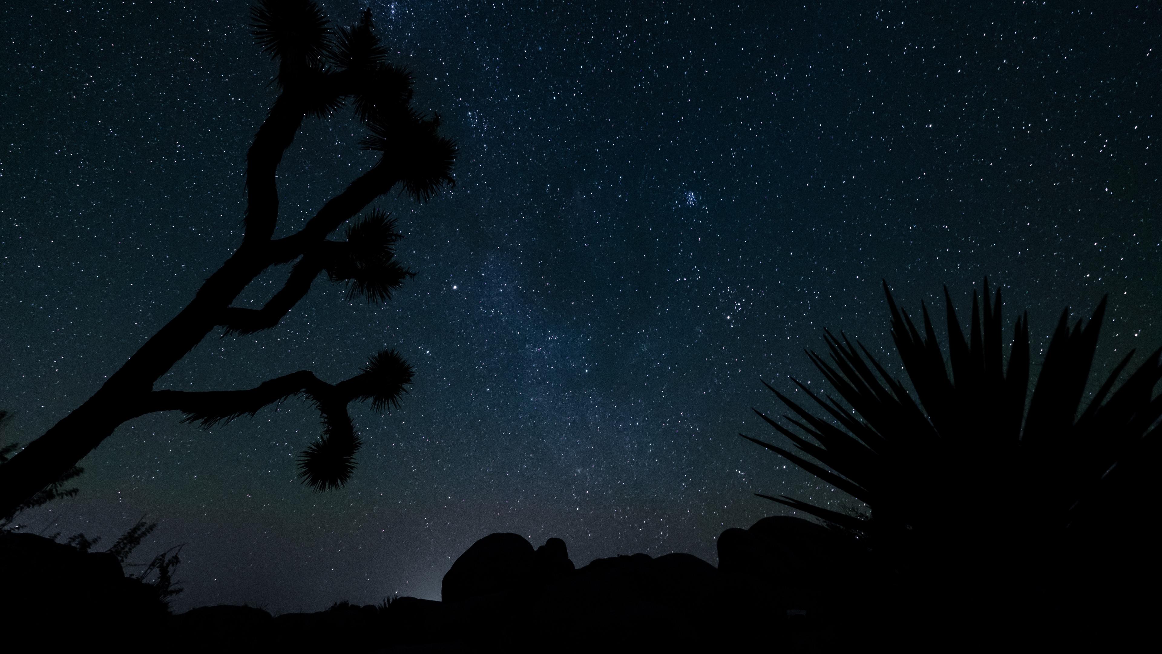 starry sky stars space 4k 1536013927 - starry sky, stars, space 4k - Stars, starry sky, Space