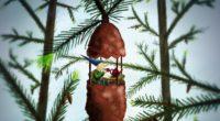 tea party art pine cone gnome forest comfort 4k 1536098409 200x110 - tea party, art, pine cone, gnome, forest, comfort 4k - tea party, pine cone, art