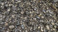 texture stones background 4k 1536097851 200x110 - texture, stones, background 4k - Texture, Stones, Background