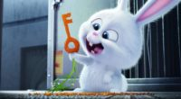 the secrete life of pets bunny 1536362083 200x110 - The Secrete Life of Pets Bunny - the secret life of pets wallpapers, movies wallpapers, cartoons wallpapers, bunny wallpapers, animated movies wallpapers