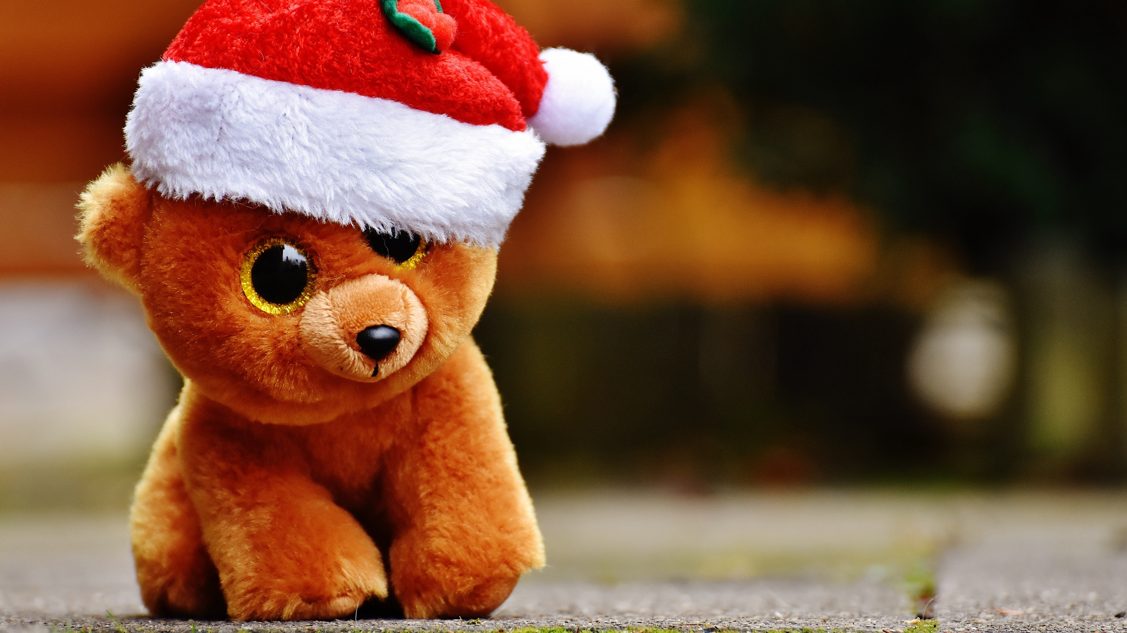 toy teddy bear christmas 4k 1538344962 - toy, teddy bear, christmas 4k - toy, teddy bear, Christmas
