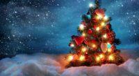 tree new year christmas snow holiday night garland 4k 1538345394 200x110 - tree, new year, christmas, snow, holiday, night, garland 4k - tree, new year, Christmas