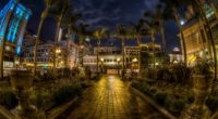 usa san diego california trees palms night pavement hdr 4k 1538066821 200x110 - usa, san diego, california, trees, palms, night, pavement, hdr 4k - USA, san diego, California