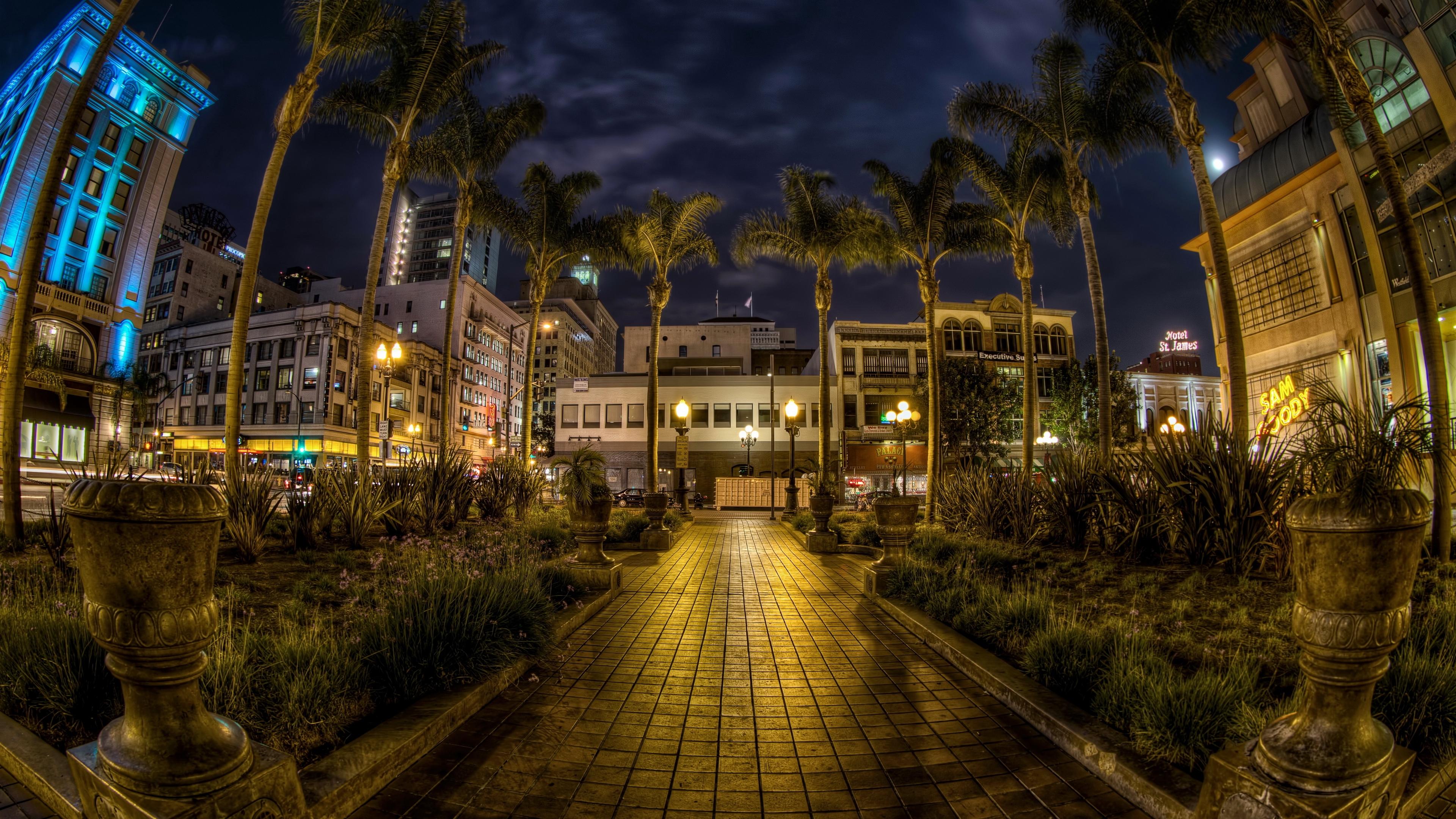 usa san diego california trees palms night pavement hdr 4k 1538066821 - usa, san diego, california, trees, palms, night, pavement, hdr 4k - USA, san diego, California