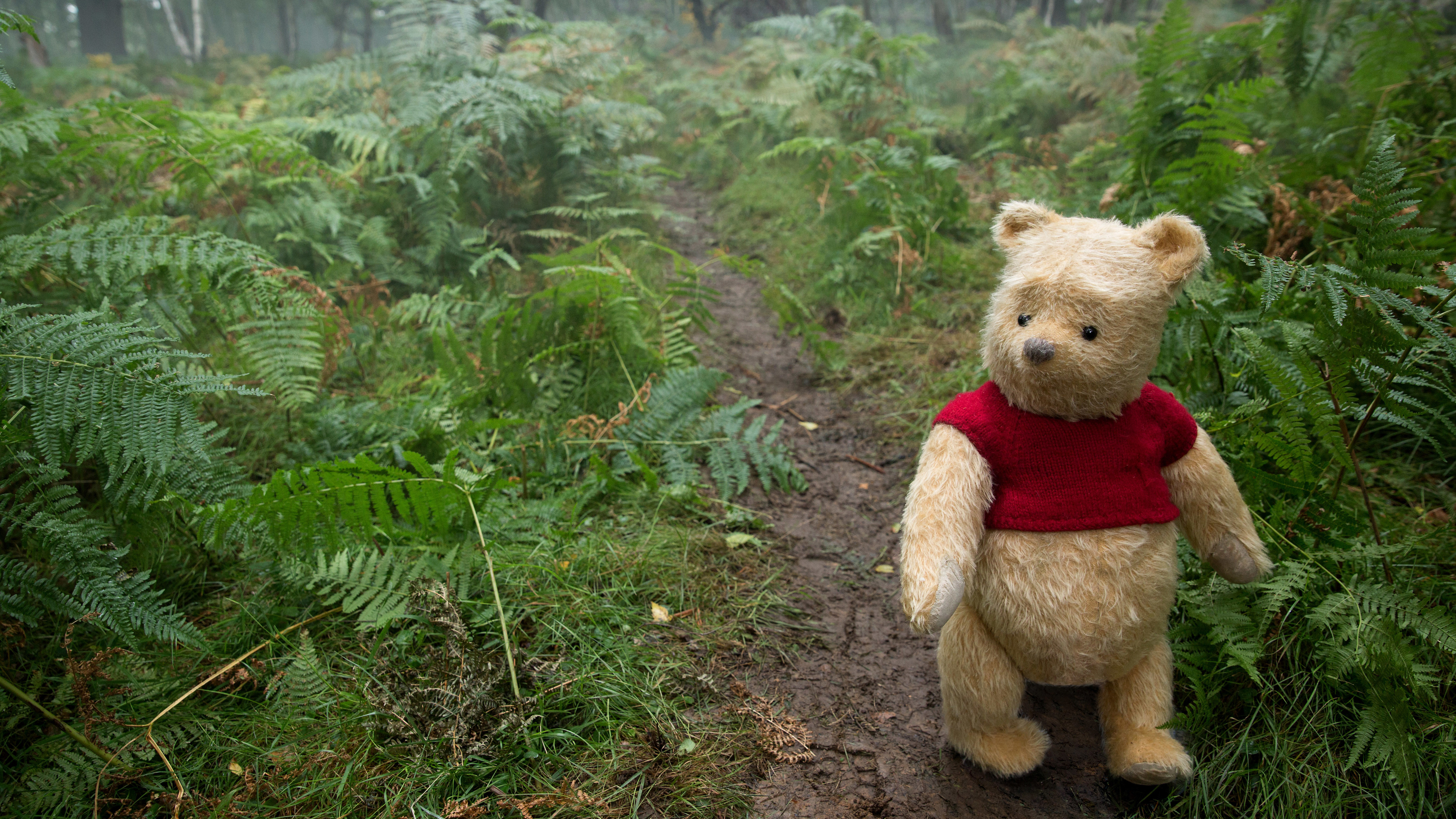 Wallpaper 4k Winnie The Pooh In Christopher Robin Movie 5k