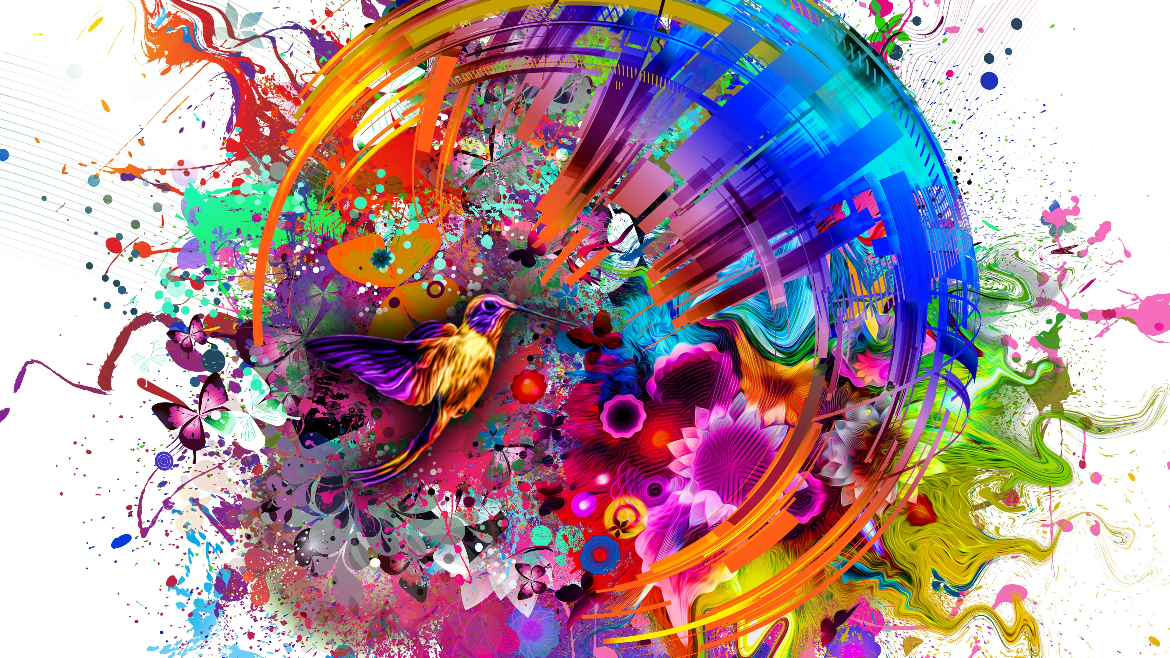 abstract colors flashy bird 4k 1539370886 - Abstract Colors Flashy Bird 4k - hd-wallpapers, birds wallpapers, abstract wallpapers, 4k-wallpapers