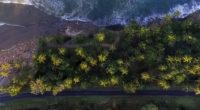 aerial shot of trees 4k 1540135431 200x110 - Aerial Shot Of Trees 4k - waves wallpapers, water wallpapers, trees wallpapers, sea wallpapers, nature wallpapers, hd-wallpapers, beach wallpapers, 4k-wallpapers