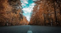 alone road forest autumn golden trees ultra 4k 1540134570 200x110 - Alone Road Forest Autumn Golden Trees Ultra 4k - trees wallpapers, road wallpapers, hd-wallpapers, forest wallpapers, autumn wallpapers, 5k wallpapers, 4k-wallpapers