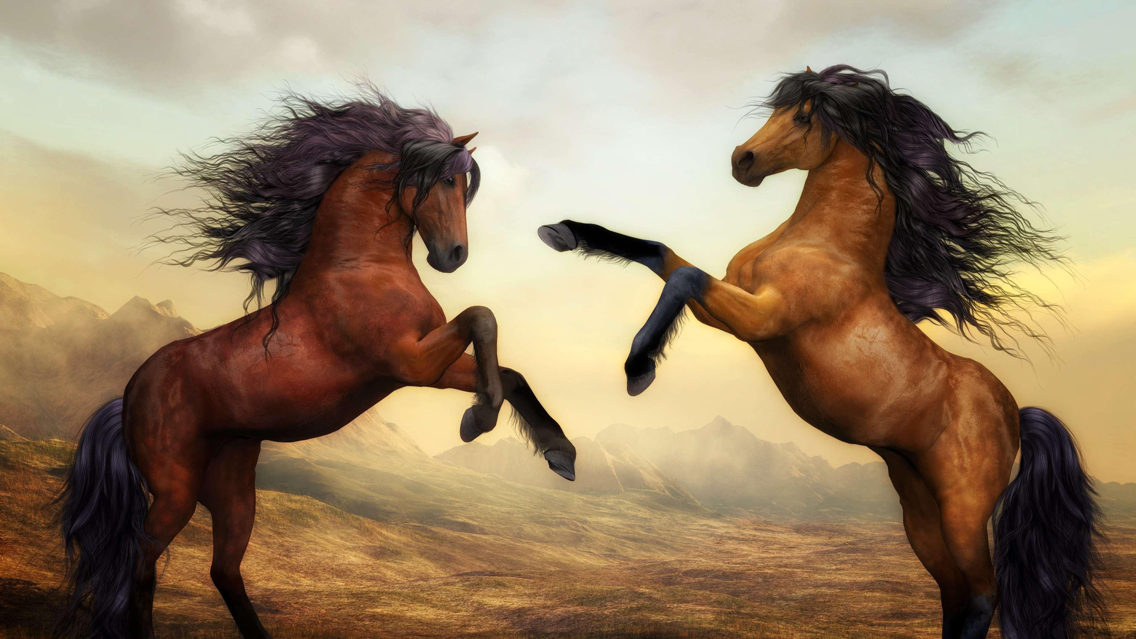 arabian horse artistic 4k 1540751152 - Arabian Horse Artistic 4k - horse wallpapers, hd-wallpapers, digital art wallpapers, artwork wallpapers, 4k-wallpapers