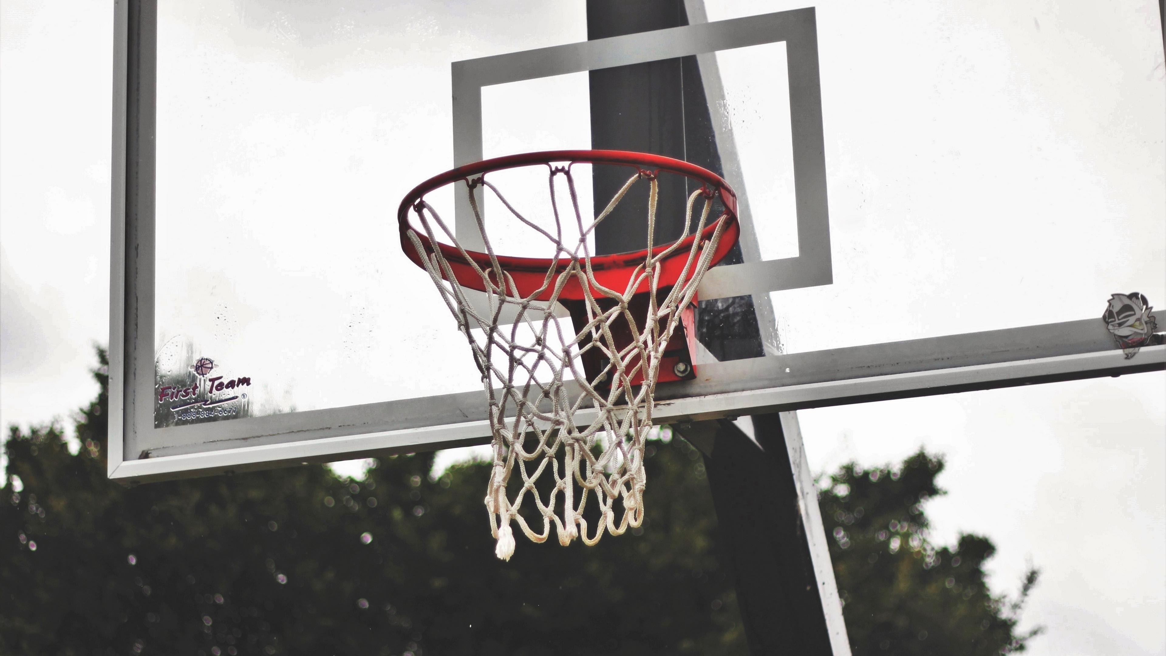 basketball shield basketball mesh 4k 1540062652 - basketball shield, basketball, mesh 4k - mesh, basketball shield, Basketball