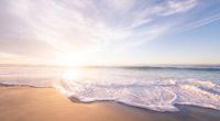 beach seashore sunrise 4k 1540144684 200x110 - Beach Seashore Sunrise 4k - waves wallpapers, sunrise wallpapers, seashore wallpapers, nature wallpapers, hd-wallpapers, beach wallpapers, 5k wallpapers, 4k-wallpapers