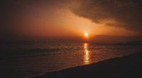 beach shore during sunset 4k 1540135437 200x110 - Beach Shore During Sunset 4k - sunset wallpapers, shore wallpapers, hd-wallpapers, dawn wallpapers, beach wallpapers, 5k wallpapers, 4k-wallpapers