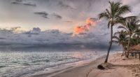 beach summer ocean trees wind flowing 4k 1540134660 200x110 - Beach Summer Ocean Trees Wind Flowing 4k - wind wallpapers, trees wallpapers, summer wallpapers, ocean wallpapers, nature wallpapers, hd-wallpapers, beach wallpapers, 4k-wallpapers