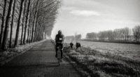 bicyclist bw trees road traffic 4k 1540062571 200x110 - bicyclist, bw, trees, road, traffic 4k - Trees, bw, bicyclist