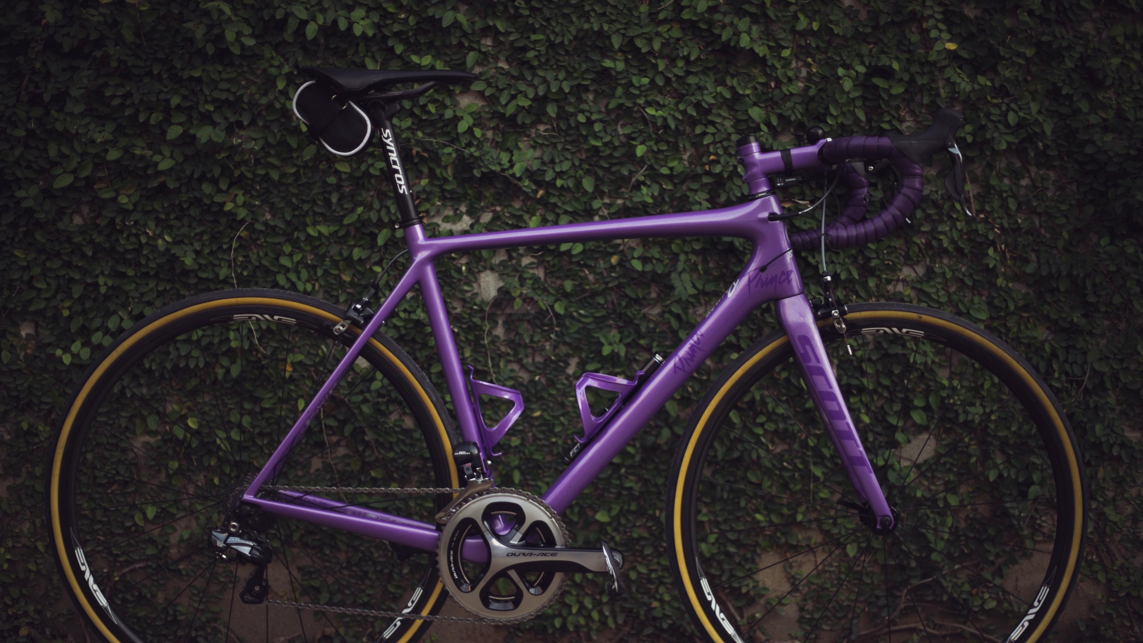 bike sport bushes 4k 1540060867 - bike, sport, bushes 4k - Sport, bushes, Bike
