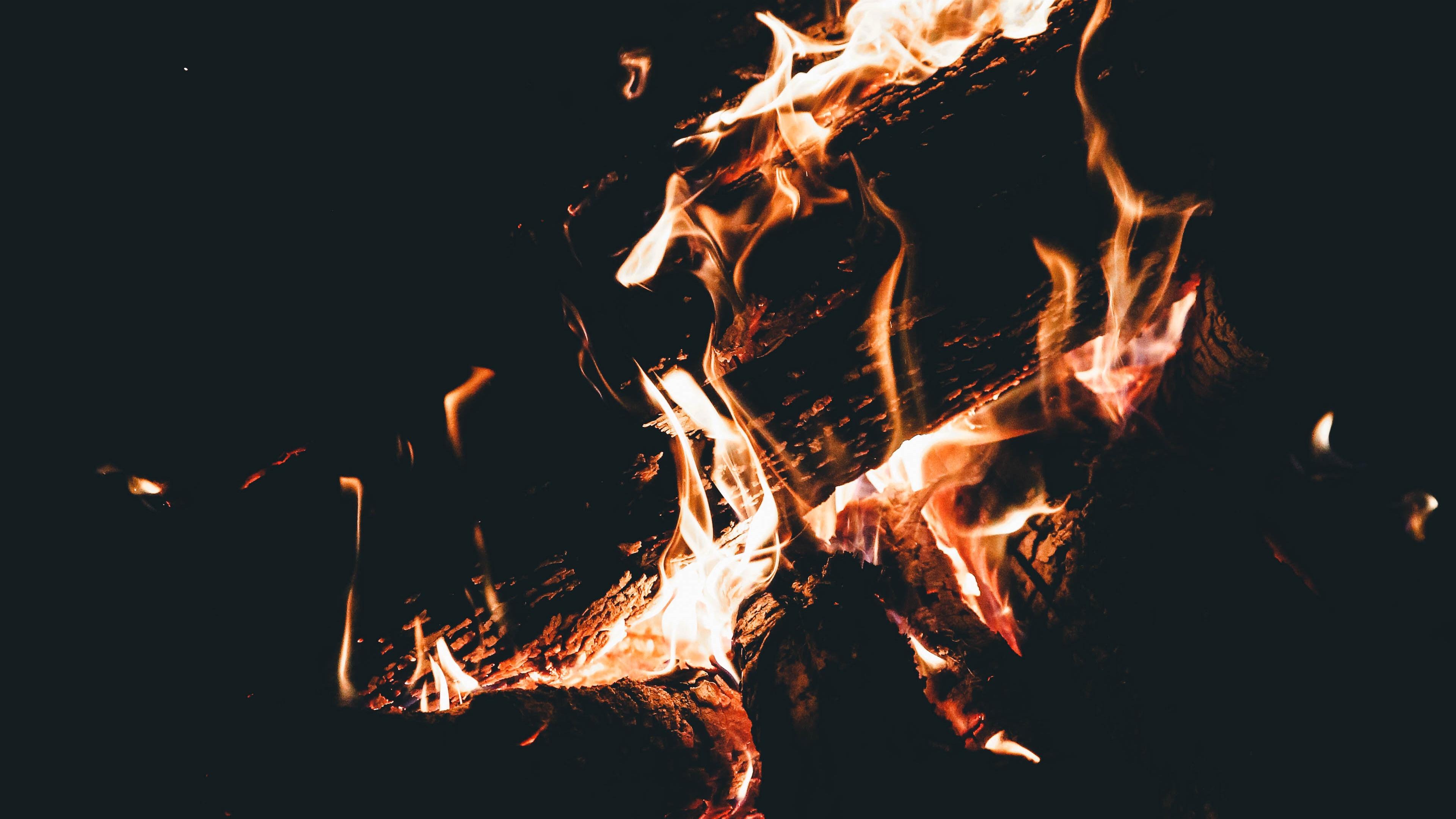 bonfire fire flame firewood dark camping burning 4k 1540575138 - bonfire, fire, flame, firewood, dark, camping, burning 4k - flame, Fire, bonfire