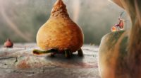 botanicula characters sprouts art turtle 4k 1538944813 200x110 - botanicula, characters, sprouts, art, turtle 4k - Sprouts, characters, botanicula