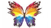 butterfly abstract colorful 1539370612 200x110 - Butterfly Abstract Colorful - creative wallpapers, colorful wallpapers, butterfly wallpapers, abstract wallpapers