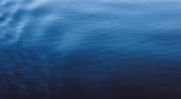 calm ocean water 4k 1540141083 200x110 - Calm Ocean Water 4k - water wallpapers, ocean wallpapers, nature wallpapers, hd-wallpapers, 5k wallpapers, 4k-wallpapers