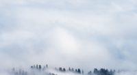 clouds snow fog 4k 1540141125 200x110 - Clouds Snow Fog 4k - snow wallpapers, nature wallpapers, hd-wallpapers, fog wallpapers, clouds wallpapers, 5k wallpapers, 4k-wallpapers