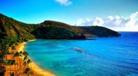 coast of hawaii 4k 1540131552 200x110 - Coast Of Hawaii 4k - nature wallpapers, coast wallpapers