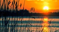 crops sunset lake 4k 1540131385 200x110 - Crops Sunset Lake 4k - sunset wallpapers, nature wallpapers, lake wallpapers, fields wallpapers