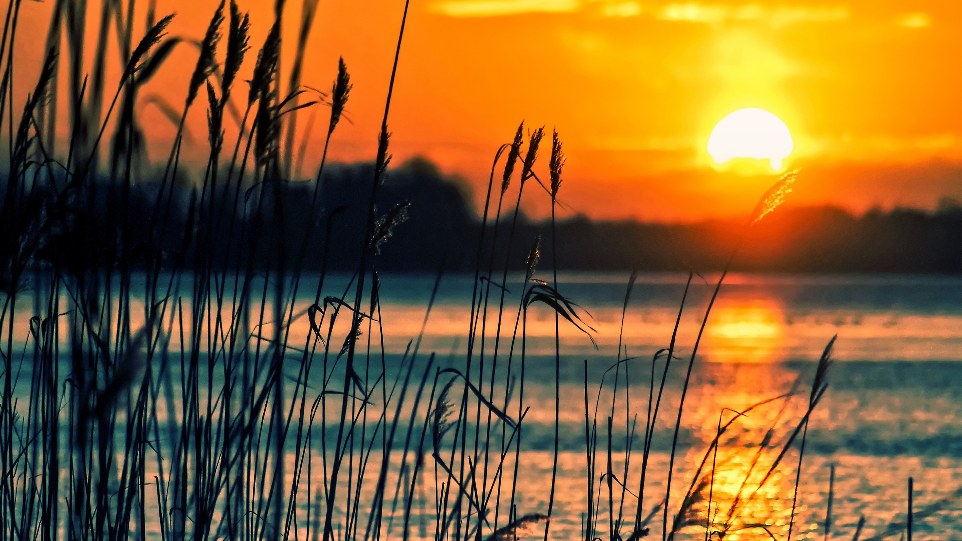 crops sunset lake 4k 1540131385 - Crops Sunset Lake 4k - sunset wallpapers, nature wallpapers, lake wallpapers, fields wallpapers