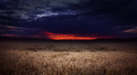 dark field covered by clouds sunset 4k 1540143386 200x110 - Dark Field Covered By Clouds Sunset 4k - sunset wallpapers, nature wallpapers, hd-wallpapers, field wallpapers, clouds wallpapers, 5k wallpapers, 4k-wallpapers
