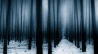 dark forest woods snow winter 4k 1540133031 200x110 - Dark Forest Woods Snow Winter  4k - winter wallpapers, trees wallpapers, snow wallpapers, nature wallpapers, hd-wallpapers, forest wallpapers, 8k wallpapers, 5k wallpapers, 4k-wallpapers