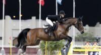 equestrian horse rider 4k 1540063420 200x110 - equestrian, horse, rider 4k - rider, horse, equestrian