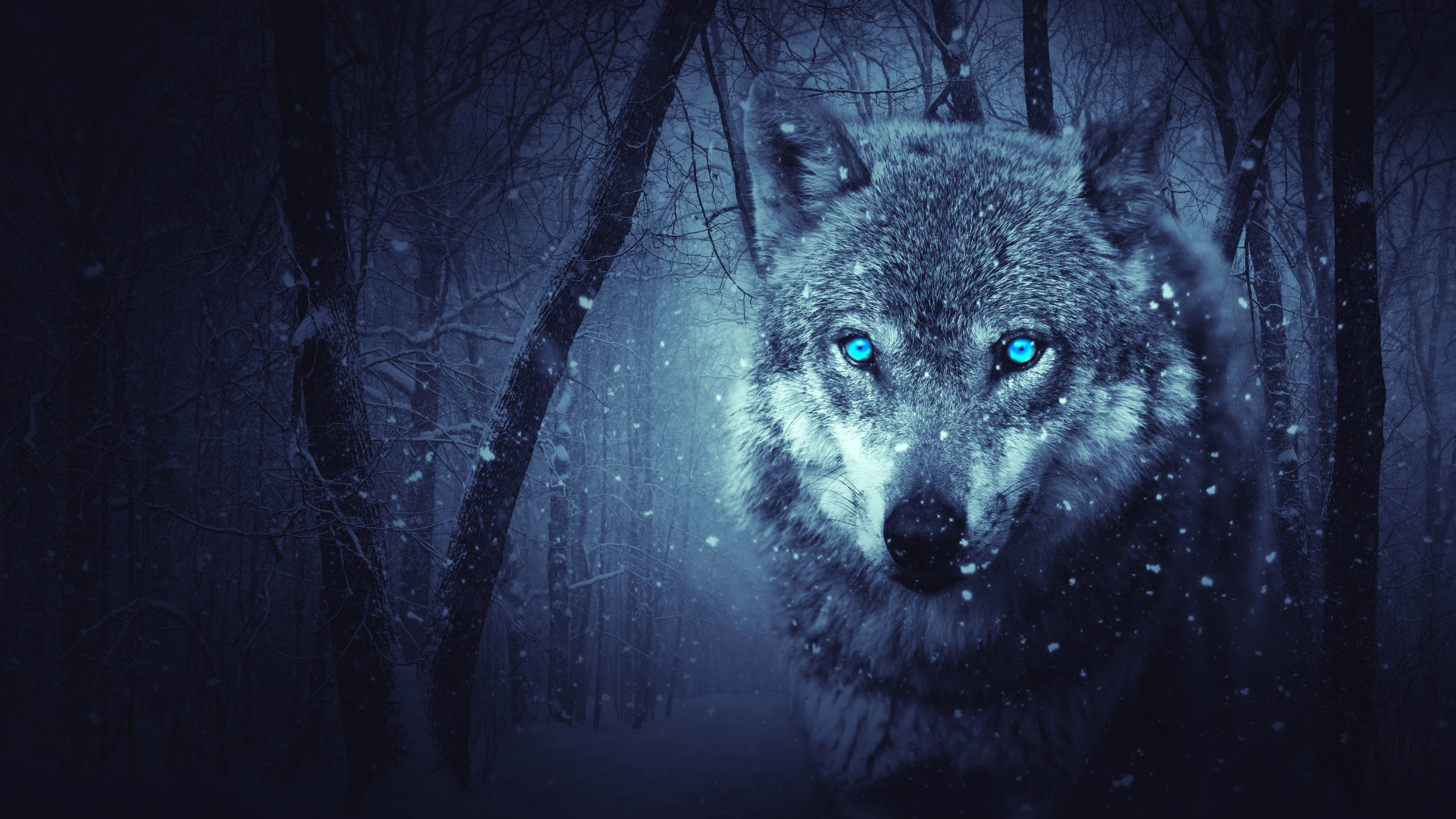 fantasy wolf 4k 1540749148 - Fantasy Wolf 4k - wolf wallpapers, hd-wallpapers, fantasy wallpapers, digital art wallpapers, artist wallpapers, 5k wallpapers
