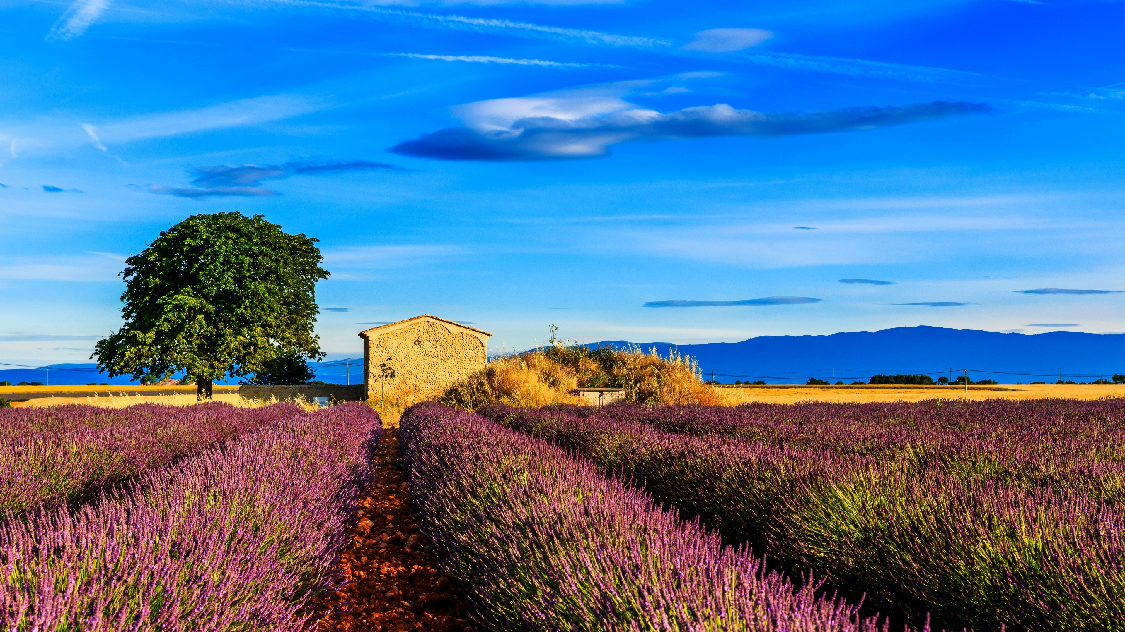 fields nature 4k 1540131485 - Fields Nature 4k - nature wallpapers, fields wallpapers