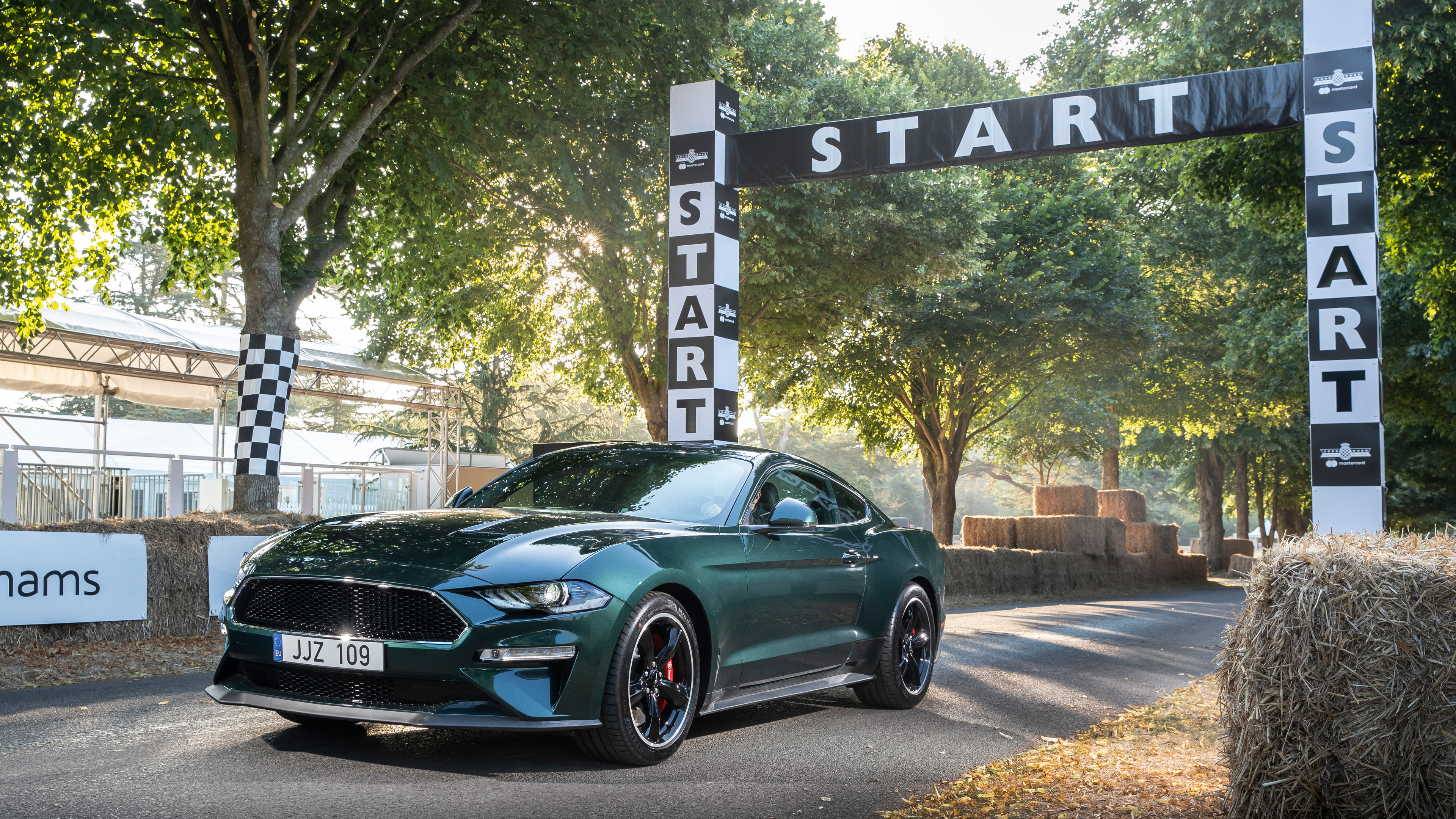 ford mustang bullitt new limited edition 2019 1539792853 - Ford Mustang Bullitt New Limited Edition 2019 - mustang wallpapers, hd-wallpapers, ford mustang wallpapers, cars wallpapers, 5k wallpapers, 4k-wallpapers, 2018 cars wallpapers