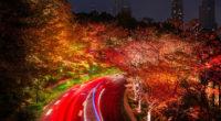 japan tokyo roads autumn trees night 4k 1540135740 200x110 - Japan Tokyo Roads Autumn Trees Night 4k - trees wallpapers, tokyo wallpapers, road wallpapers, night wallpapers, nature wallpapers, japan wallpapers, hd-wallpapers, autumn wallpapers, 5k wallpapers, 4k-wallpapers