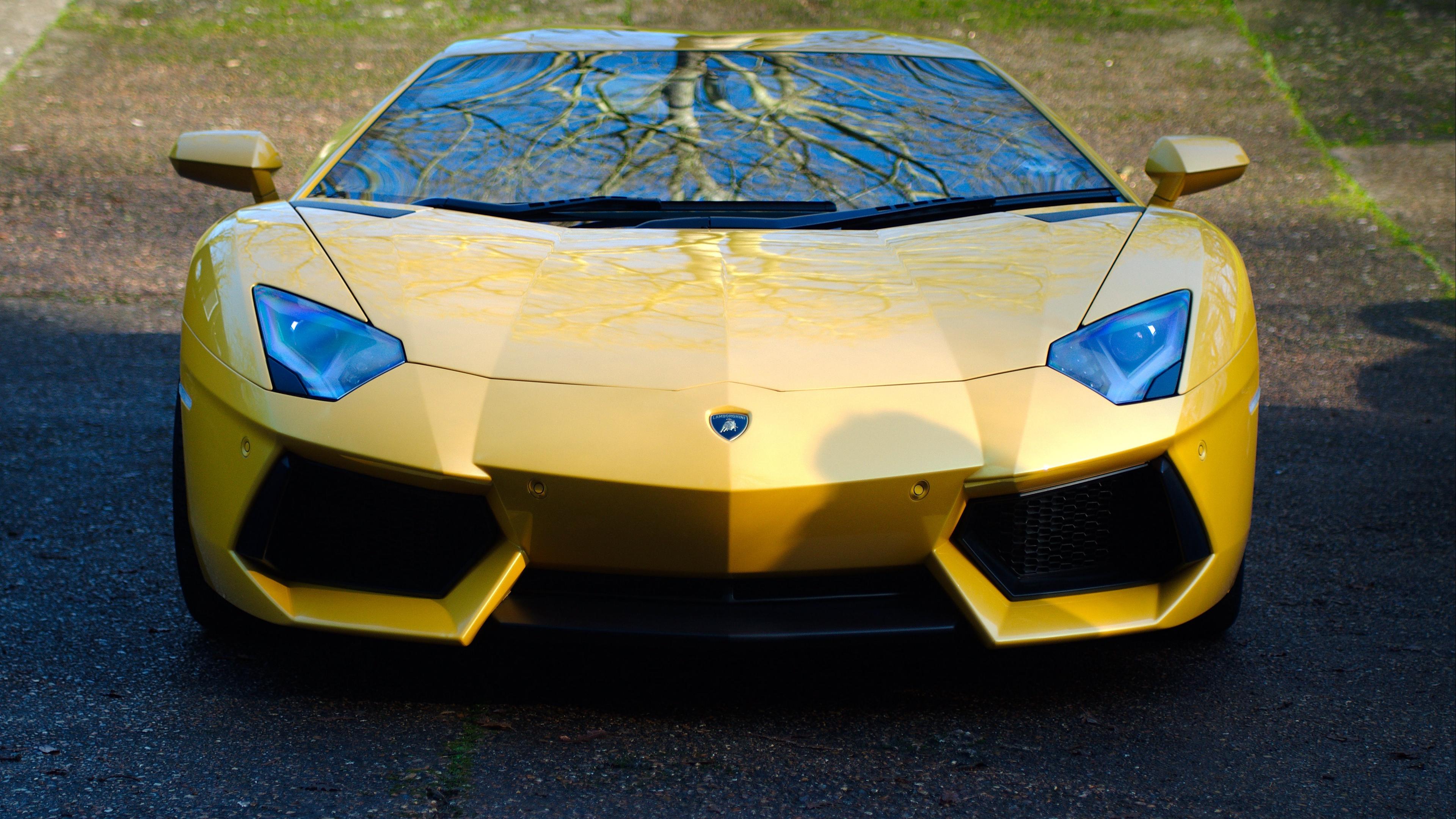 lamborghini aventador lp700 4 yellow car front view 4k 1538936349 - lamborghini, aventador, lp700-4, yellow, car, front view 4k - lp700-4, Lamborghini, Aventador