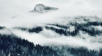 landscape scenic mountain covered with snow 5k 1540140961 200x110 - Landscape Scenic Mountain Covered With Snow 5k - snow wallpapers, nature wallpapers, mountains wallpapers, landscape wallpapers, hd-wallpapers, 5k wallpapers, 4k-wallpapers