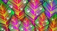 leaves dew art bright lines patterns 4k 1539369698 200x110 - leaves, dew, art, bright, lines, patterns 4k - Leaves, dew, art