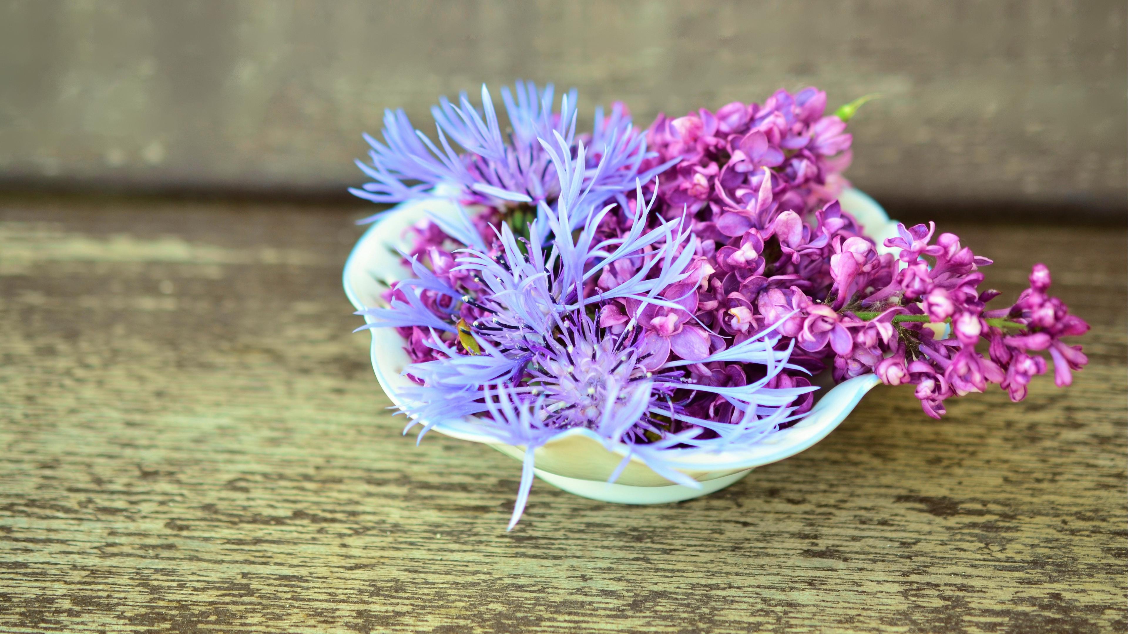 lilac cornflower flowers decoration 4k 1540064793 - lilac, cornflower, flowers, decoration 4k - Lilac, Flowers, cornflower