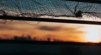 mesh blur background 4k 1540576365 200x110 - mesh, blur, background 4k - mesh, Blur, Background