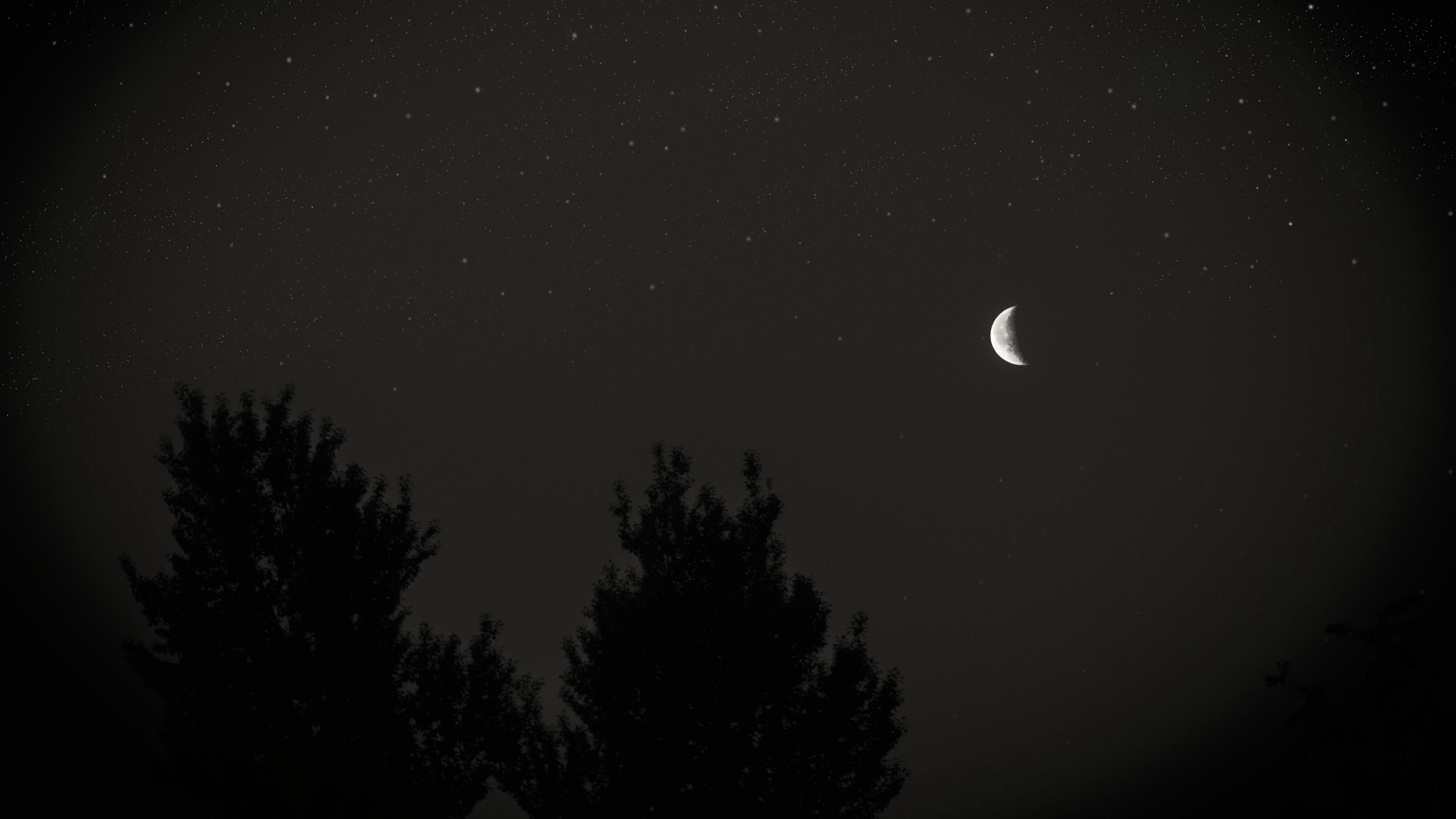 Wallpaper 4k Moon Night Sky Tree Stars Dark 4k Moon Night Sky