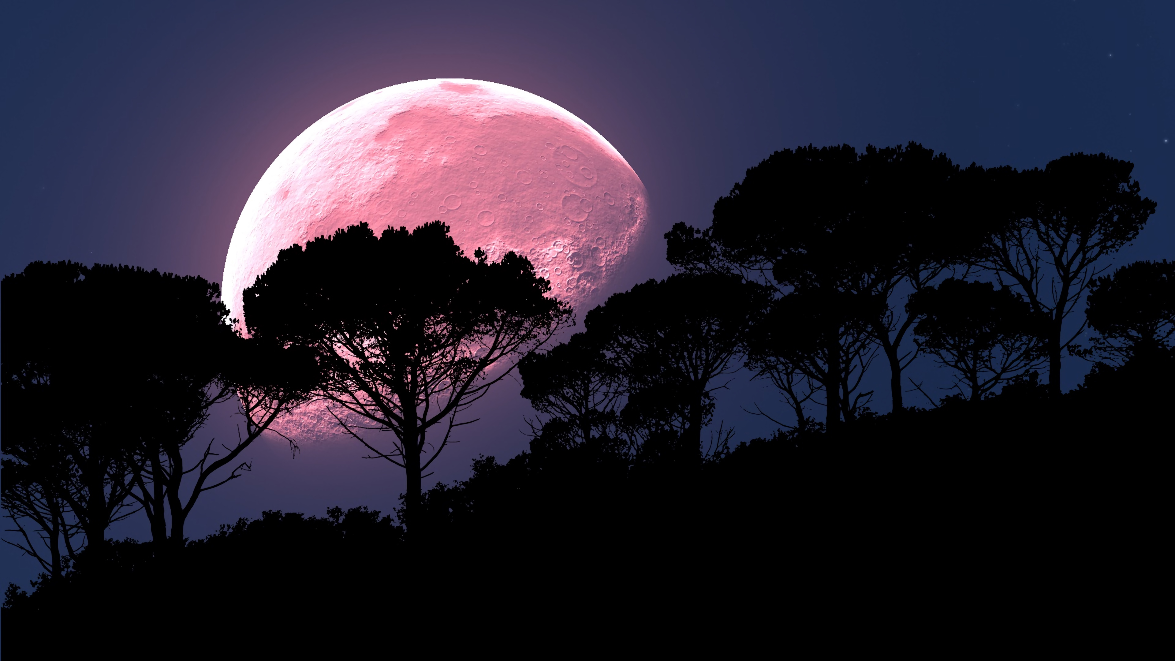moon tree photoshop night full moon planet 4k 1540576010 - moon, tree, photoshop, night, full moon, planet 4k - tree, photoshop, Moon