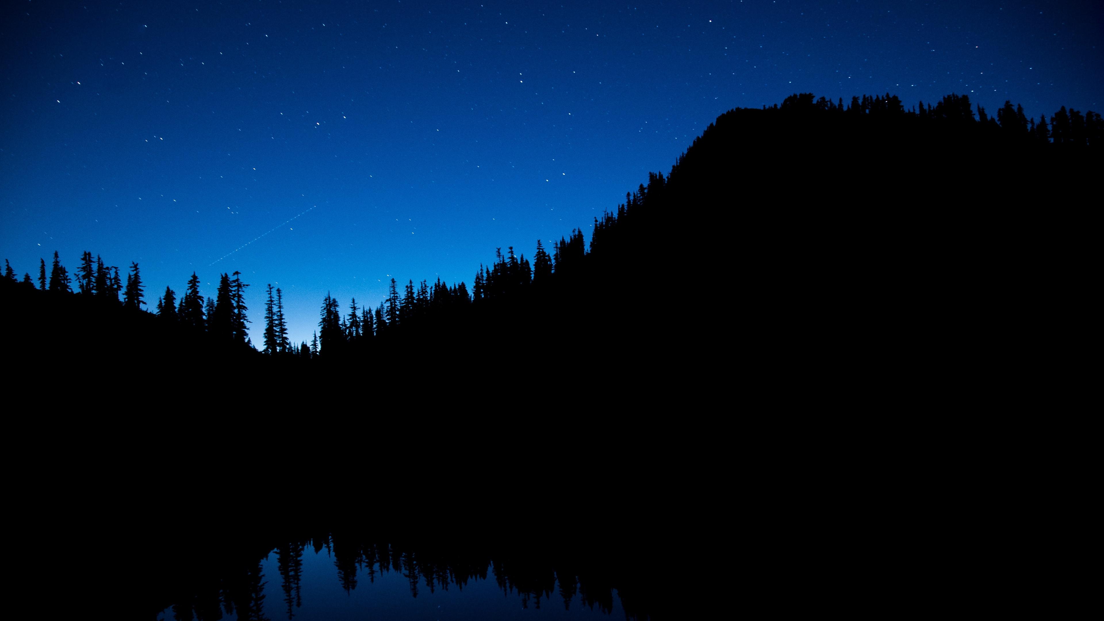 night sky trees starry sky 4k 1540576071 - night sky, trees, starry sky 4k - Trees, starry sky, night sky