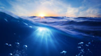 ocean clean water sun rays bubbles 4k 1540134119 200x110 - Ocean Clean Water Sun Rays Bubbles 4k - water wallpapers, sea wallpapers, ocean wallpapers, hd-wallpapers, bubbles wallpapers, 5k wallpapers, 4k-wallpapers