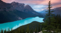 peyto lake canada mountains 4k 1540133145 200x110 - Peyto Lake Canada Mountains 4k - trees wallpapers, sky wallpapers, nature wallpapers, mountains wallpapers, lake wallpapers, hd-wallpapers, canada wallpapers, 4k-wallpapers