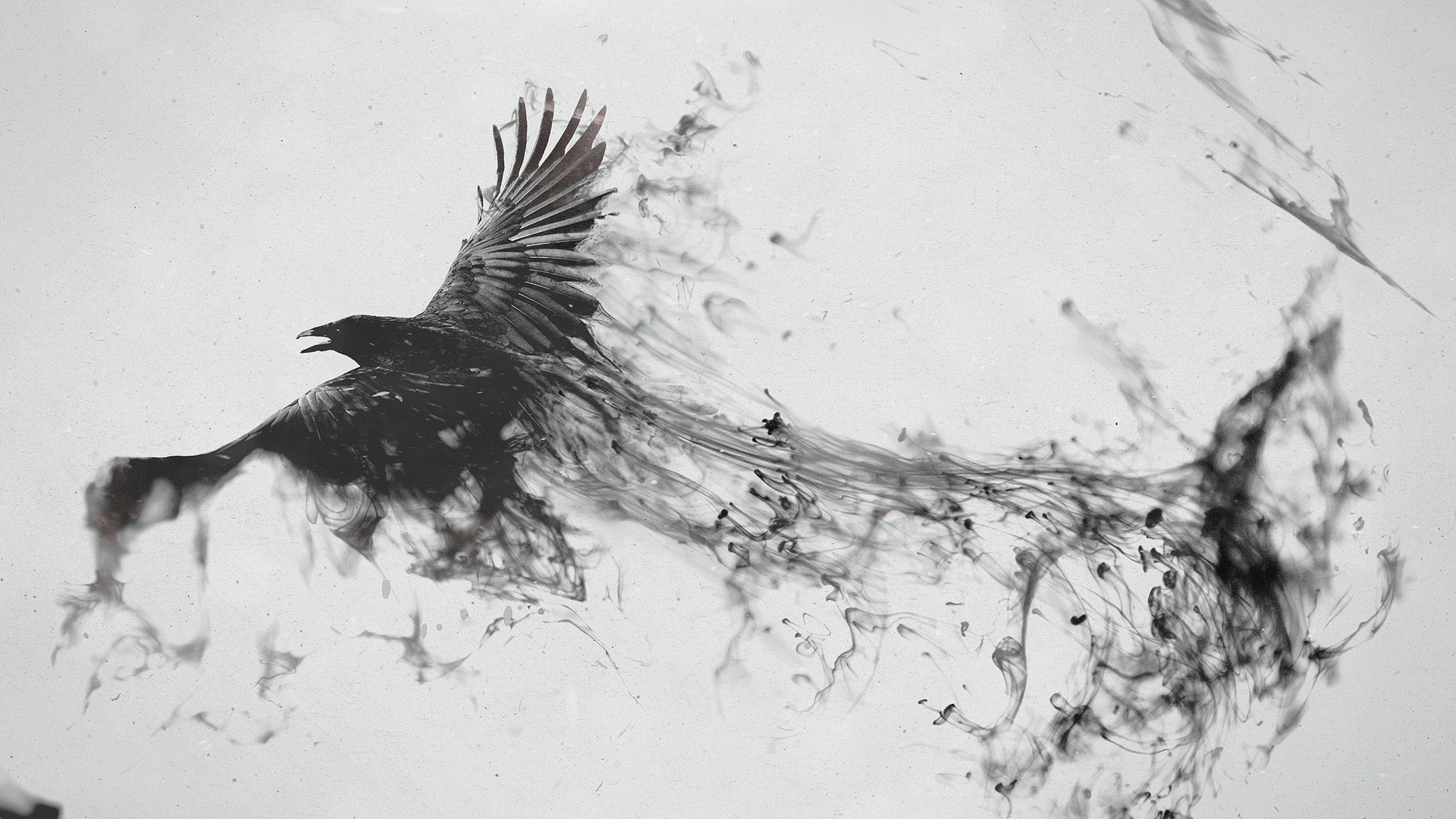 raven bird art 4k 1540748383 - Raven Bird Art 4k - raven wallpapers, digital art wallpapers, bird wallpapers, artist wallpapers, art wallpapers