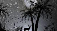 reindeer dark night moon minimalist 4k 1540756124 200x110 - Reindeer Dark Night Moon Minimalist 4k - reindeer wallpapers, moon wallpapers, monochrome wallpapers, minimalist wallpapers, minimalism wallpapers, hd-wallpapers, deer wallpapers, dark wallpapers, black and white wallpapers, 4k-wallpapers